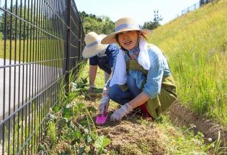 芝桜プロジェクト始動!「ライフケア黒森に来訪してくださる皆さまを芝桜でおもてなしをしたい!」